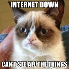 What is a server [Grumpy cat meme]