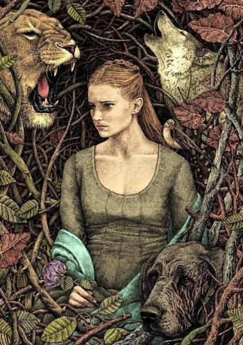 detailed fan art of Sansa Stark by Bubug